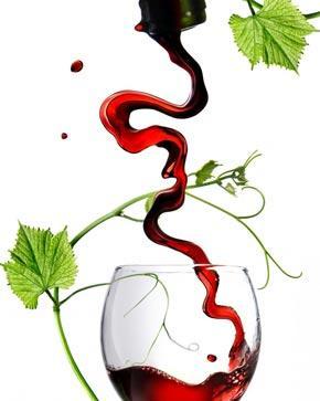 carte des vins restaurant gastronomique Eguilles